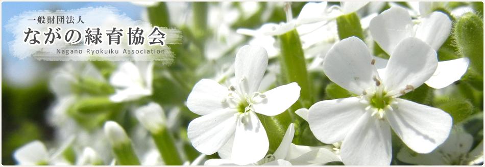 ながの緑育協会ホームページ